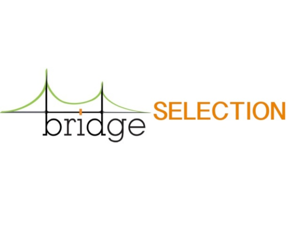 Logo Bridge Selection